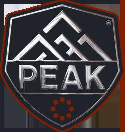 PEAK-logo-CHROME.png