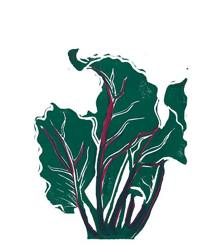 Quinn's Crops: Beet 1/5