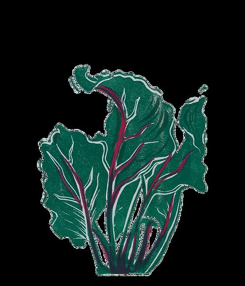 Quinn's Crops: Beet 2/5