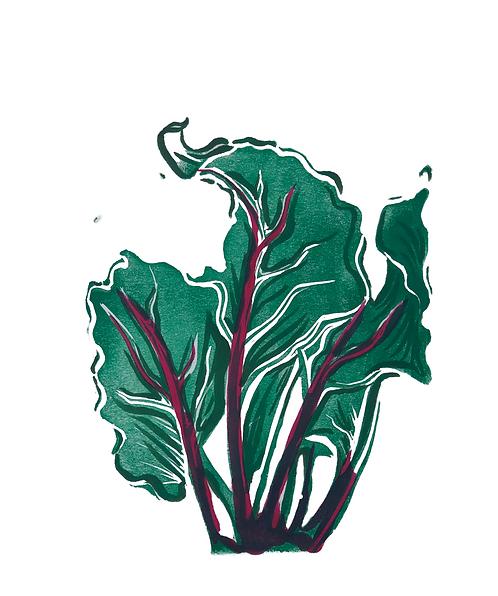 Quinn's Crops: Beet 5/5