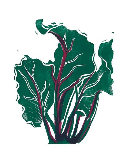 Quinn's Crops: Beet 4/5