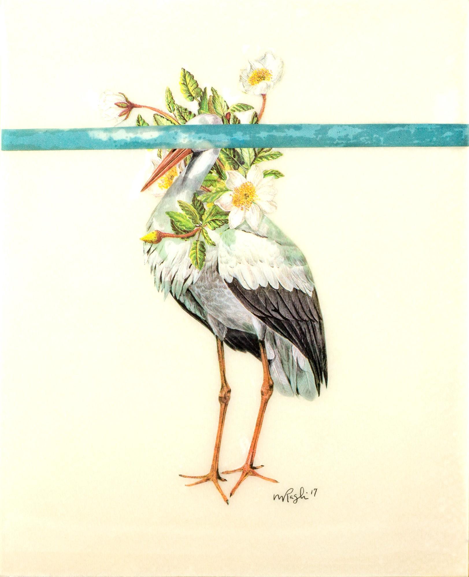 Stork | SOLD