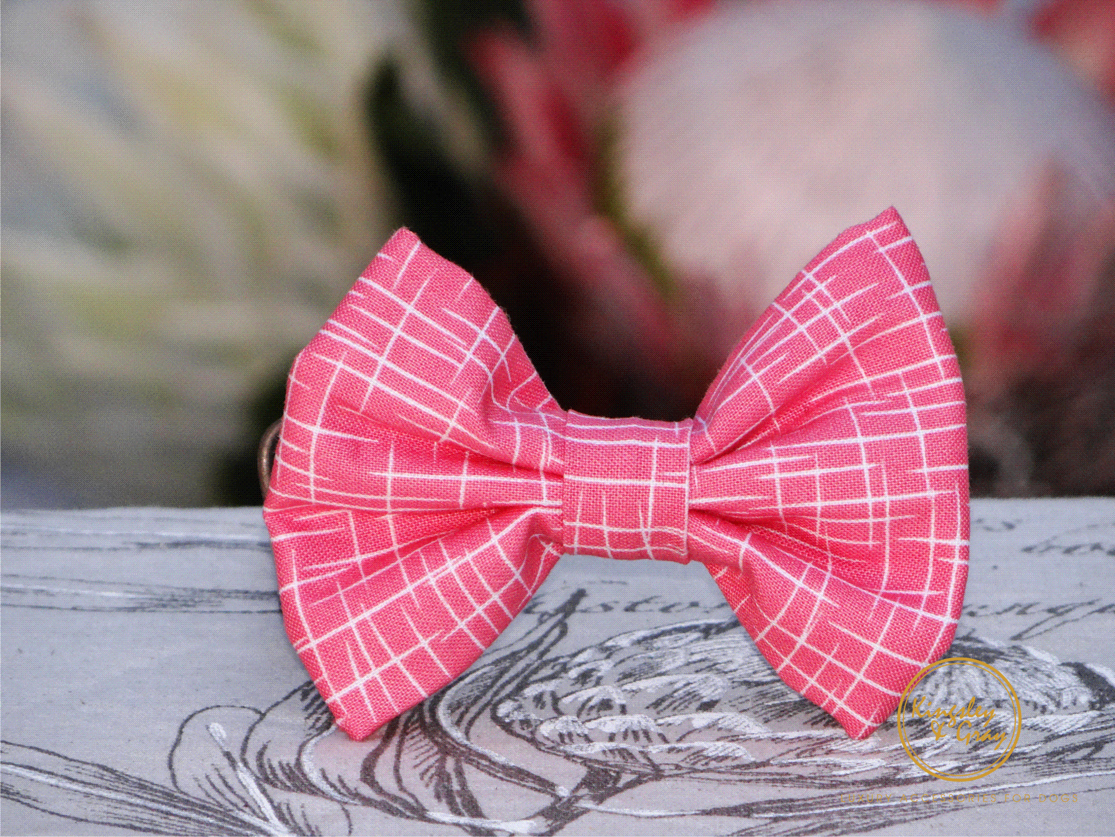 LIVING CORAL BOW TIE front