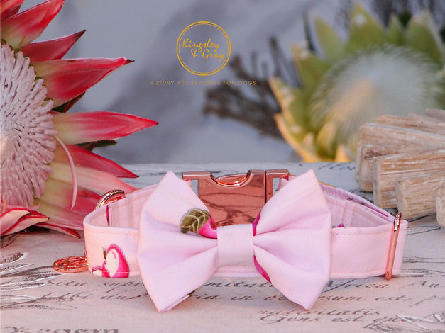 PINK ORCHARD COLLAR & BOW TIE.jpg