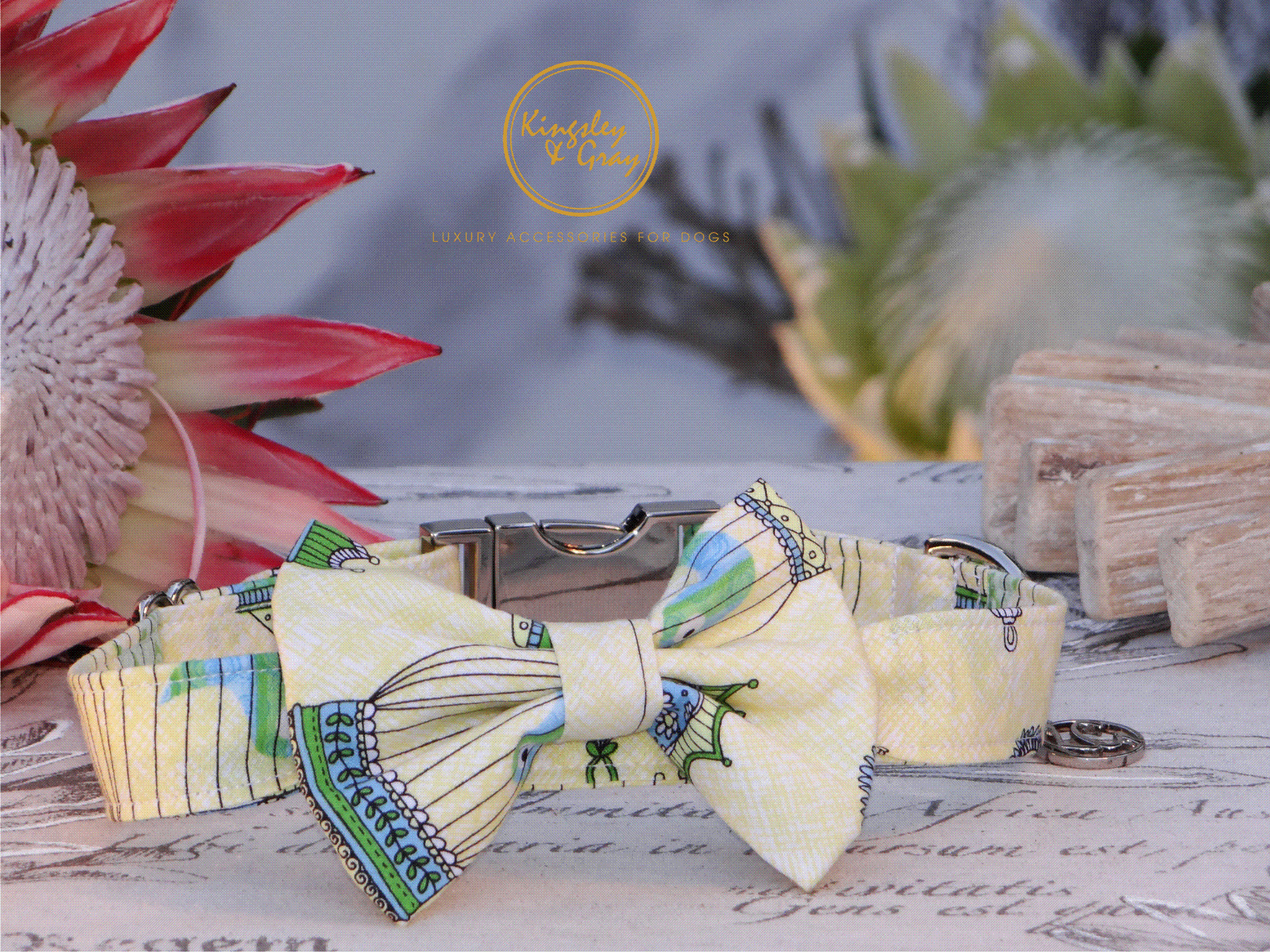 THE BIRDCAGE COLLAR & BOW TIE