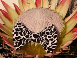 SABI SANDS BOW TIE flower