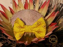 CHEETAH SHWESHWE BOW TIE flower