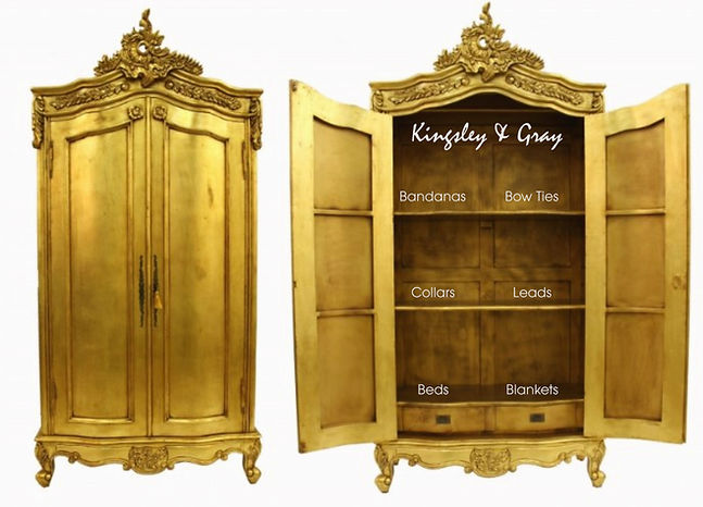 GOLDEN WARDROBE.jpg