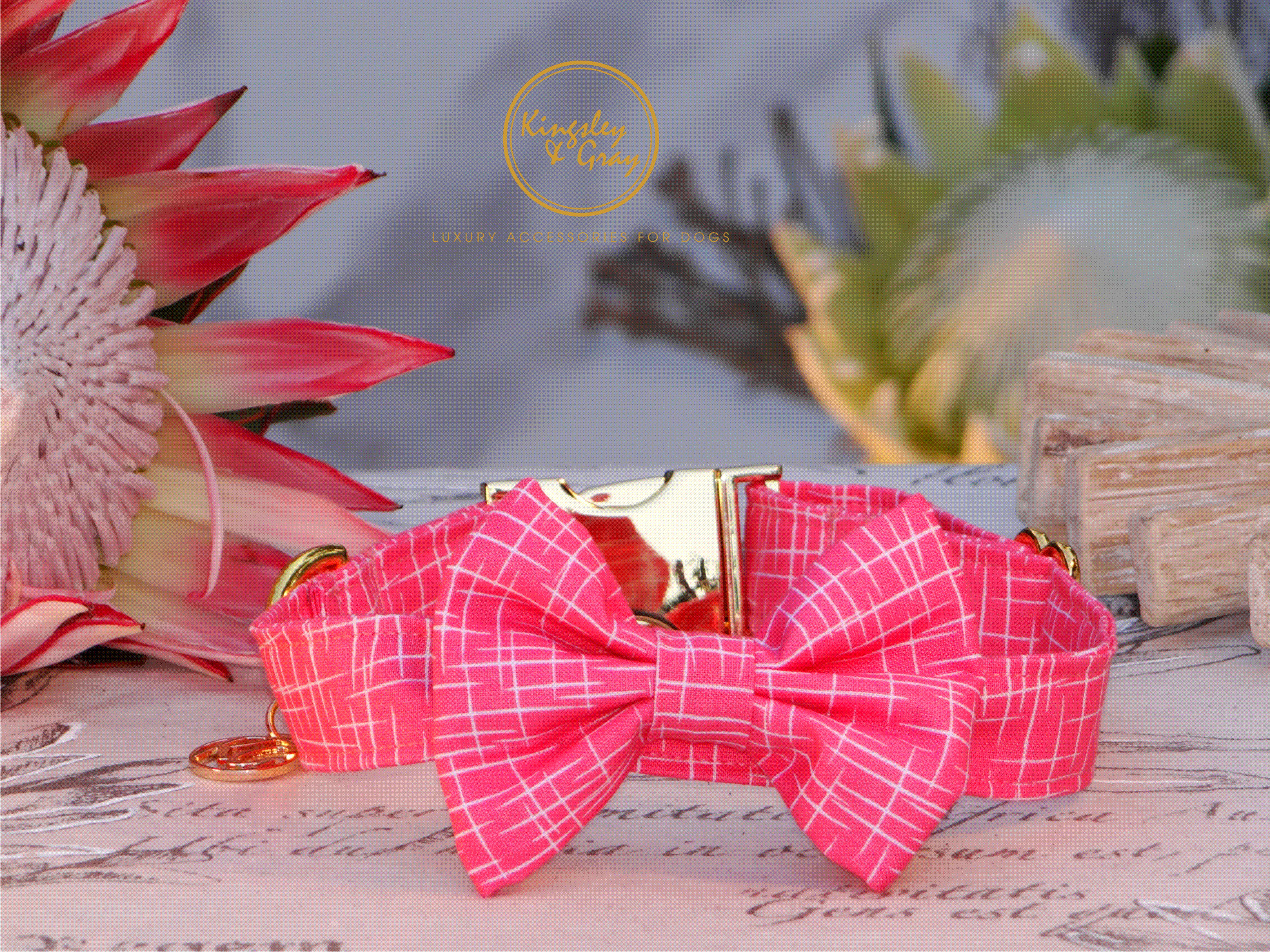LIVING CORAL COLLAR & BOW TIE