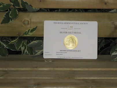 RHS Silver Gilt Medal Garden Design