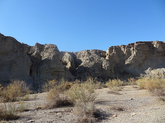 Tabernas désert
