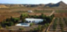 Cortijo OrO Verde Casa rural B&B