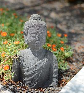 Zen Relax Cortijo oro verde