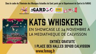 Le programme de l'Itinéraire des Musiques Actuelles du Gard