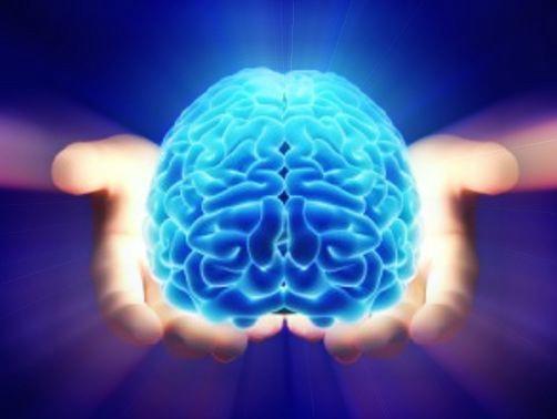 Saiba o que são os gatilhos mentais e como utilizá-los em sua estratégia