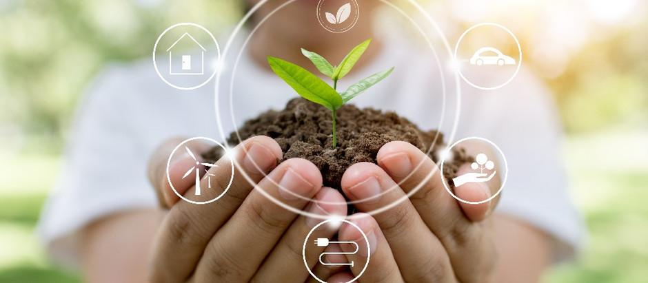 5 dicas de como tornar o seu negócio mais sustentável