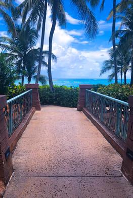 bahamas .jpg