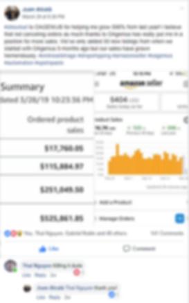 Amazon Online Retail Arbitrage Dropshipp