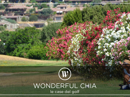 Wonderful Chia Campagna social