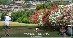 wonderful chia grafica AEIO