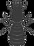 graphic-termite-vector-16864127_edited.p