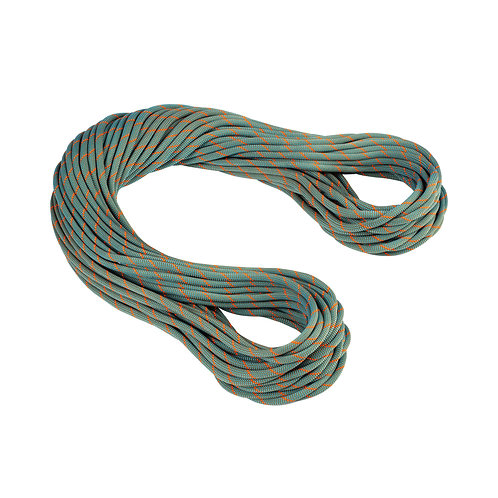 9.9 Crag Workhorse Dry Rope