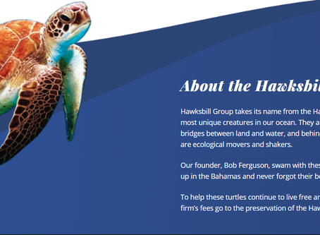 CalAsian Incoming Board Chair Kathy McKim of Hawksbill Group Announces Launch of New Subsidiary