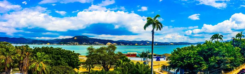 View CoCo Bongo.jpg