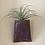 Thumbnail: Handmade Hanging Air Plant Holder/Bud Vase