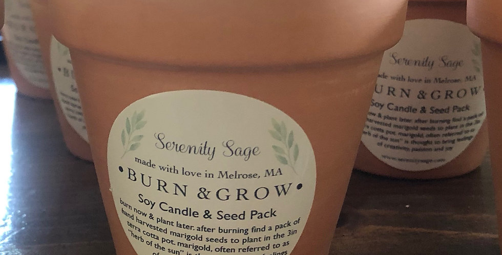 Burn & Grow Soy Candle with seeds on the bottom