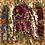 Thumbnail: Spring Goddess Herbal Smudge Stick