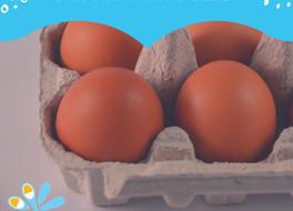 Quando e como dar ovo para os bebês