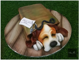 Dog in a Bag Cake