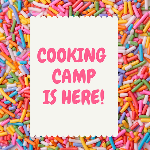 summer camp website graphic.png