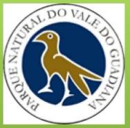 PNVG.PNG