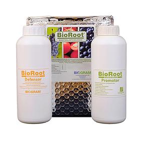 bioroot.png
