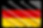 Klinik Buchinger am Boodensee, drapeau allemand
