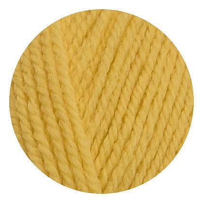 * Leda jaune poussin *