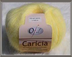 Caricia 1362