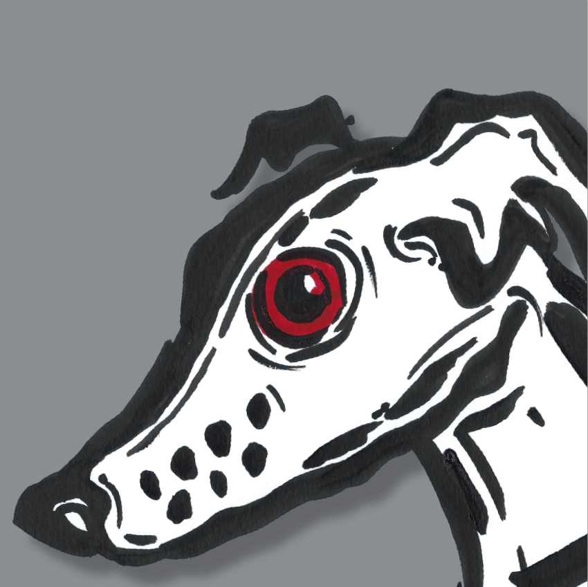 whippet_greyhound.png