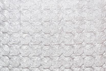 White Textured Roses