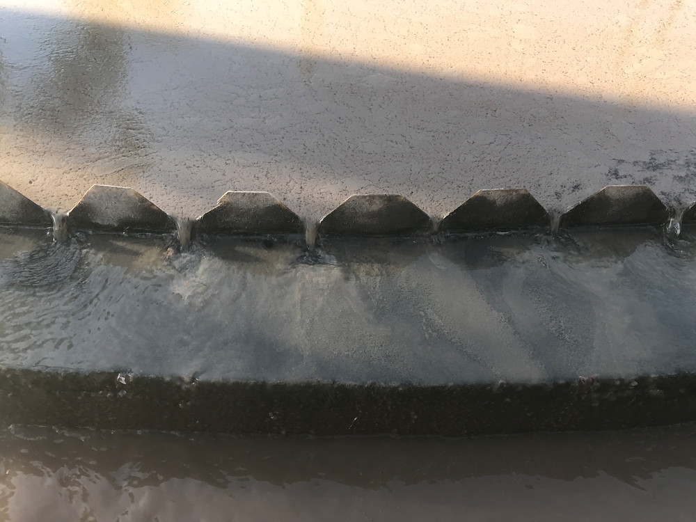Flotação de lodo biológico no sedimentador.