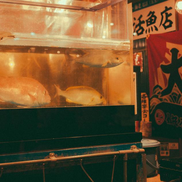 tokyo del1-88.jpg