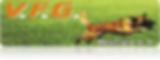 vfg logo.png