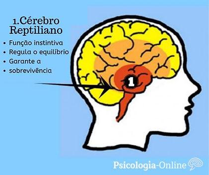 o_que_e_cerebro_reptiliano_151_0_600.jpg