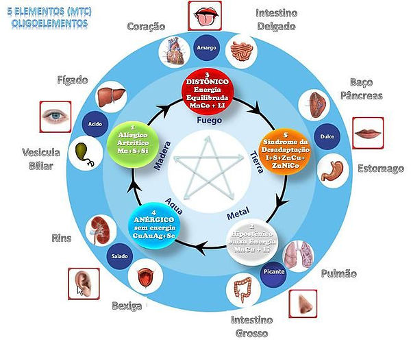 os 5 elementos da medicina chinesa.jpg