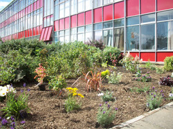 Second eco garden-after