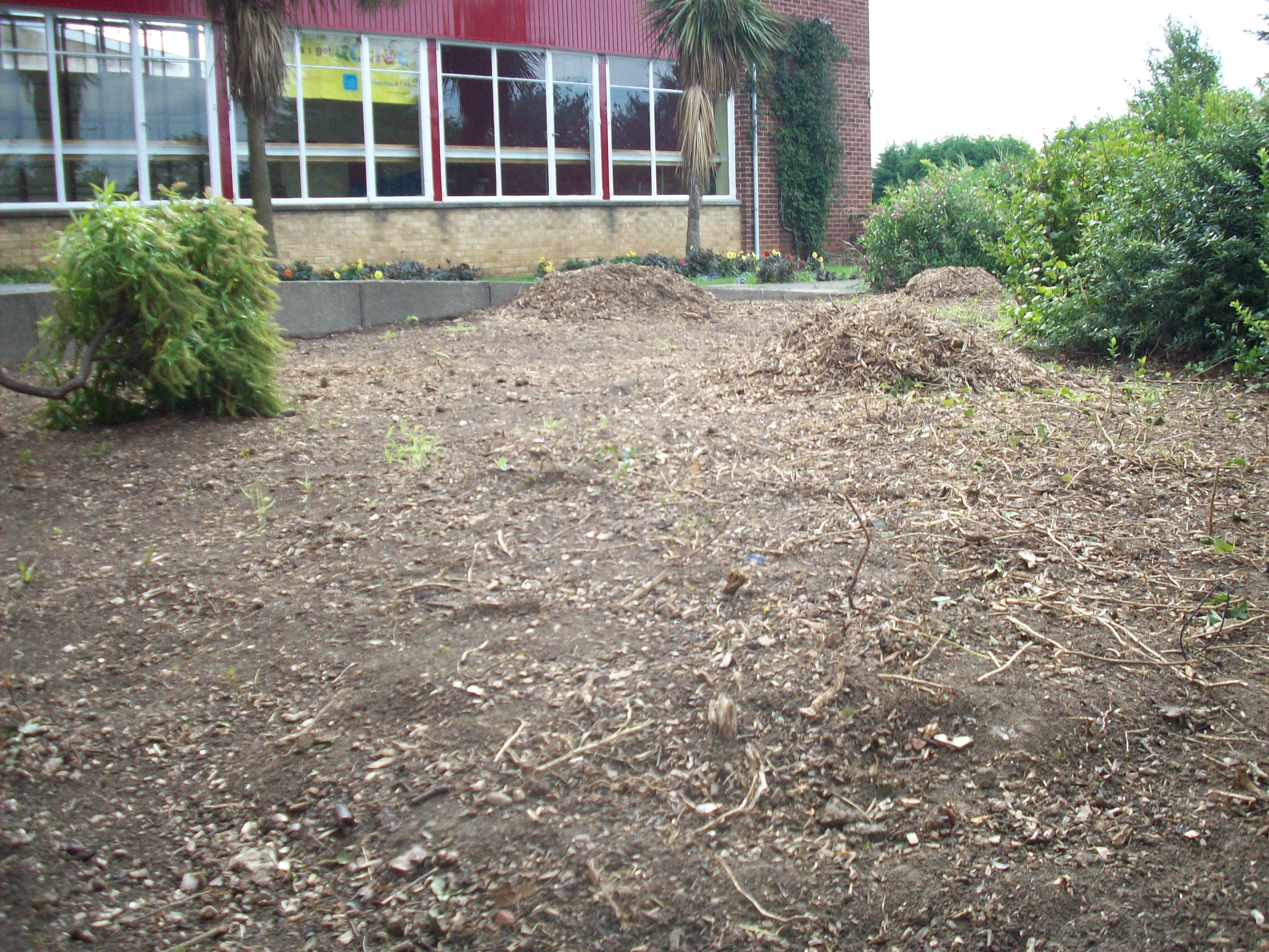 Second eco garden- before