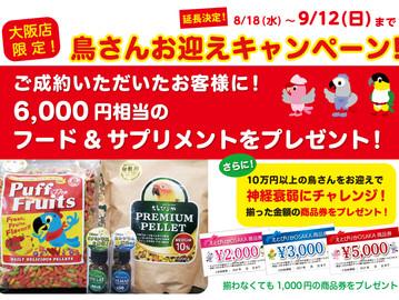 大阪店限定!お迎えキャンペーン!