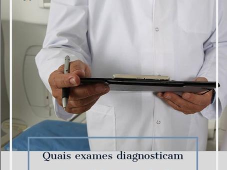 Quais exames diagnosticam a queda capilar?